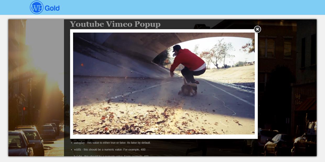 VimeoYoutubePopupPlugin_2