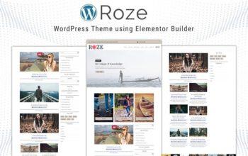 обзор wordpress темы roze