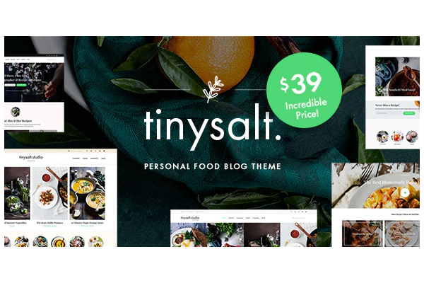 обзор wordpress шаблона tinysalt