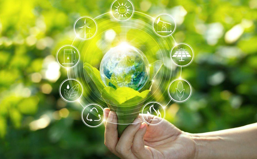 лучшие wordpress темы на тему экологии