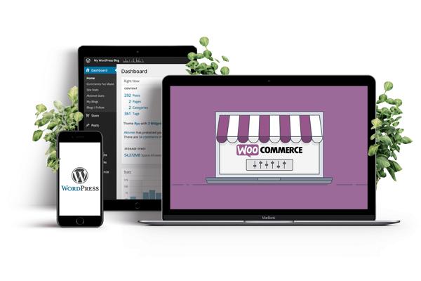 как создать интернет-магазин на wordpress