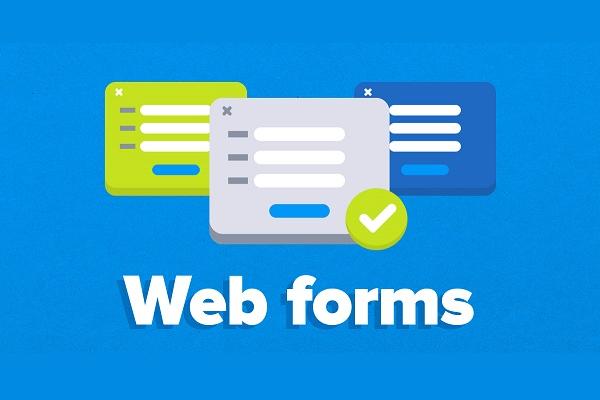 Как создать эффективные веб-формы на сайте WordPress