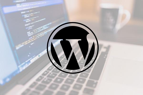 первые проблемы с обновлением wordpress 5.5.1